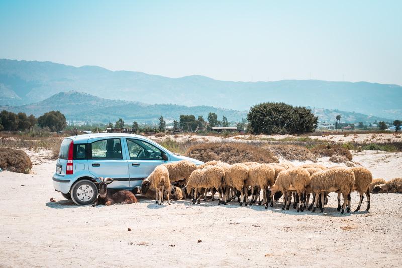Straßenverhältnisse Griechenland Insel Kos